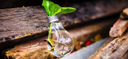 екологична-крушка-върху-дървен-материал-нарязани-трупи-450х200рх